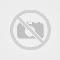 """""""НУКОН БЪЛГАРИЯ"""" ЕООД с изключително представяне на своята високоскоростна фибер лазерна машина """"ECO S-line 315 2KW"""" на 74-ти Международен Технически Панаир Пловдив 2018г."""